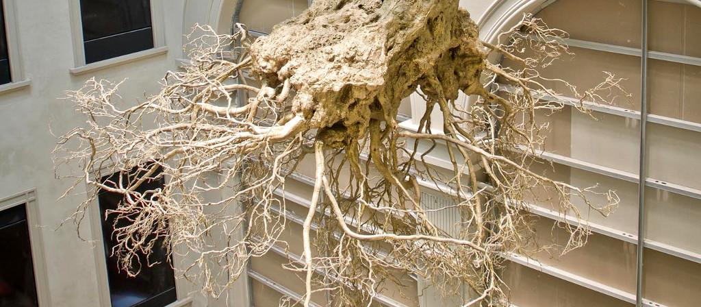 Drzewo oliwkowe podwieszane w Mediolanie