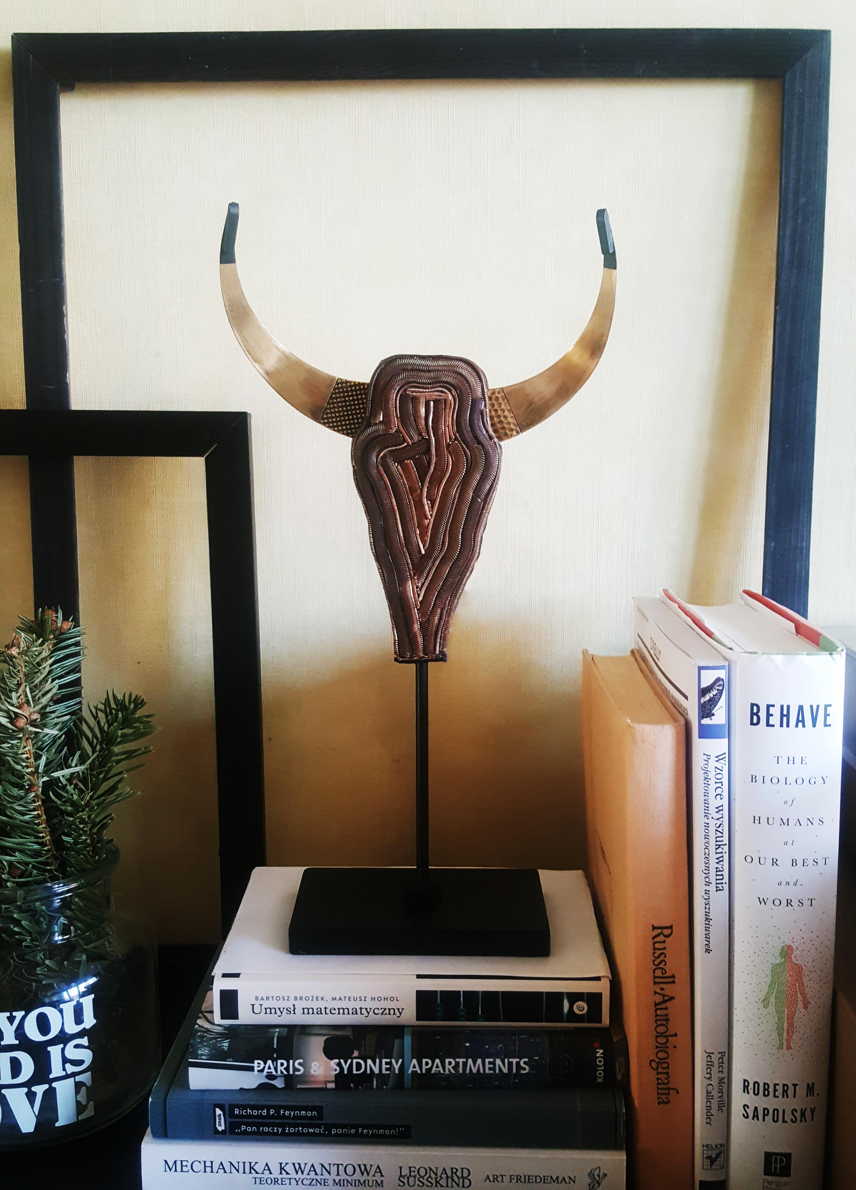 Czaszka bizona na komodzie
