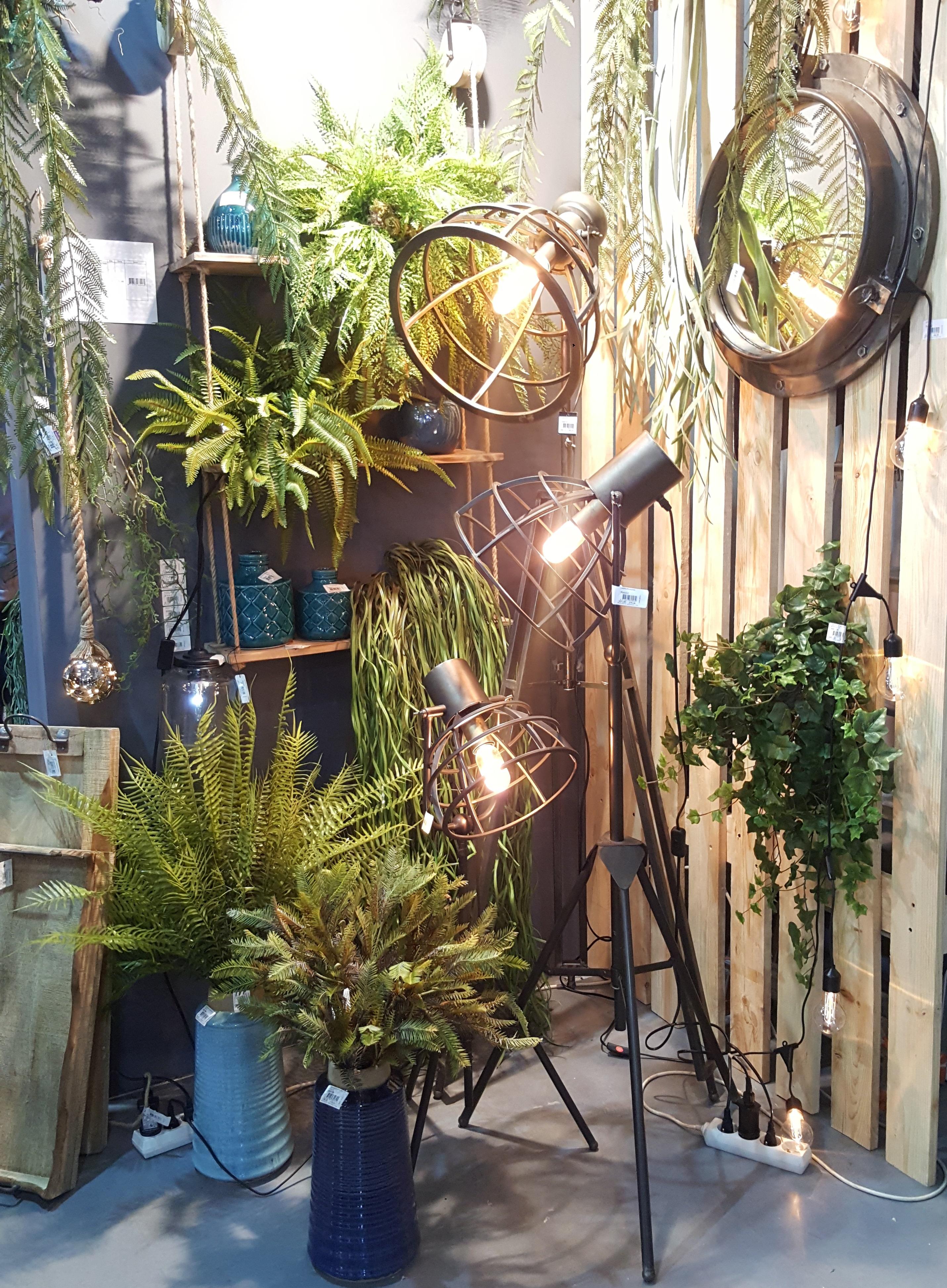 Kompozycja z roślin doniczkowych i lamp