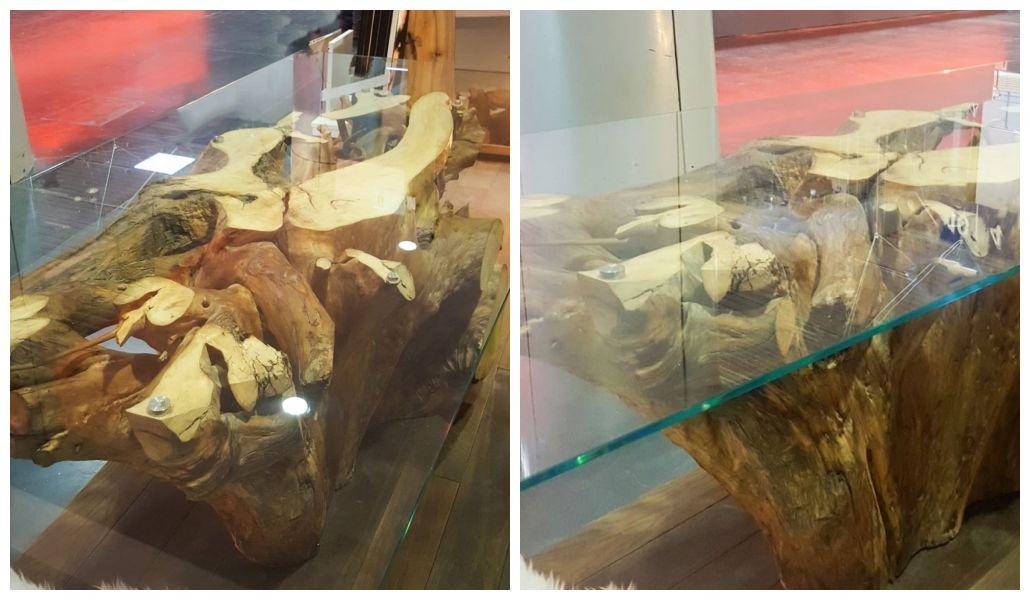 Stół z pnia i korzenia drzewa i szkła