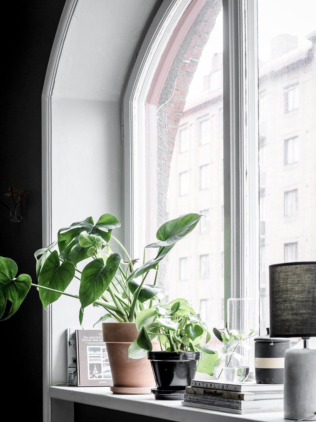 Okno w kształcie łuku