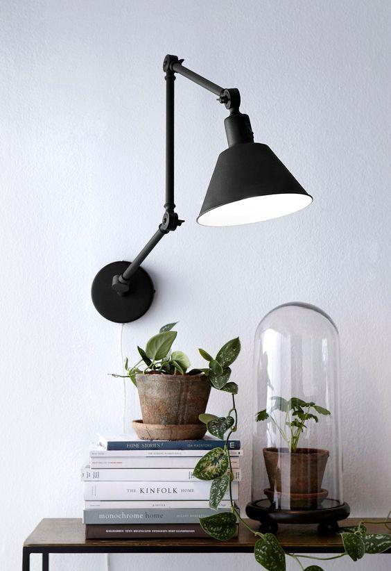 Rośliny i książki na półkach